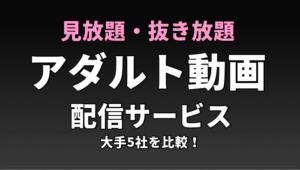 アダルト動画配信サービス