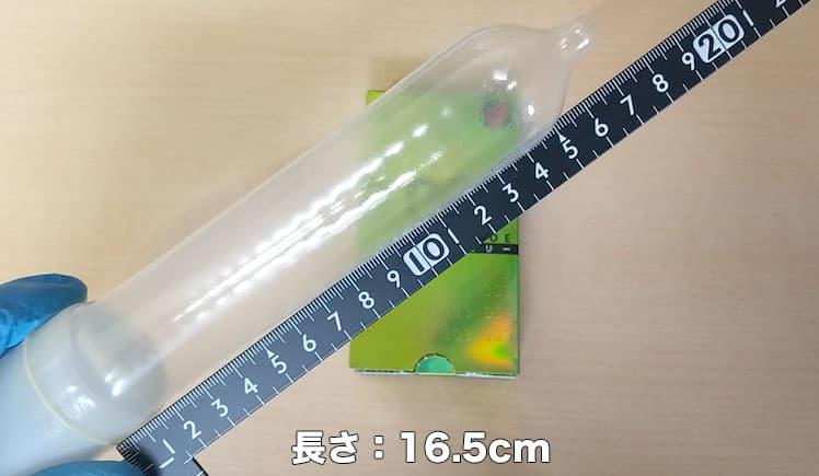 オカモト003アロエの長さを測定したところ